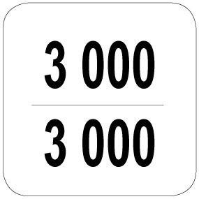 3000 / 3000